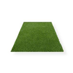 Grass Carpet 12ft